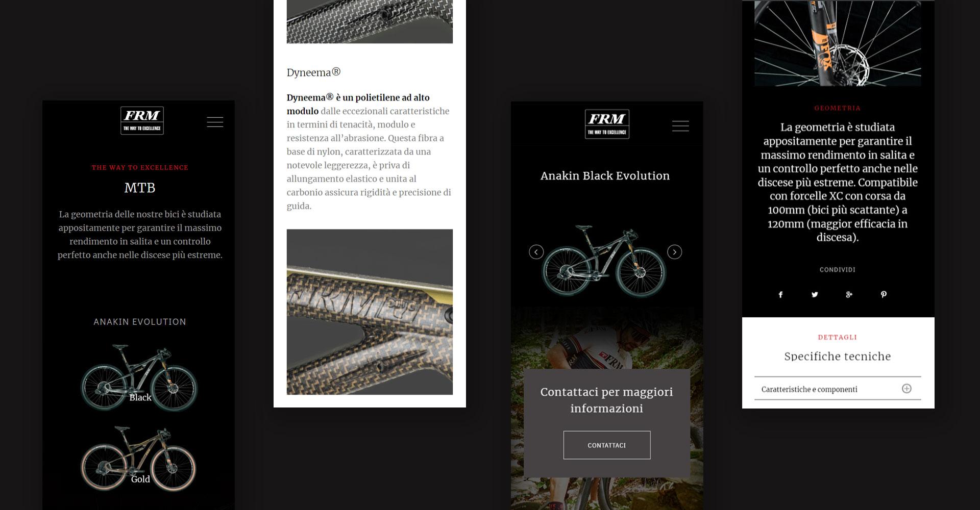 frm bike